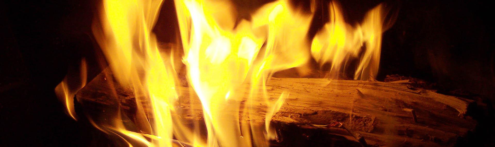 ogenj11